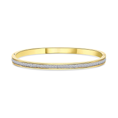 Captivate Bangle in Gold Plating